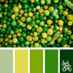 Color-palette-189-citrus