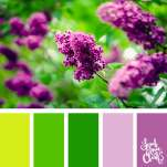 Color-palette-193-purple-flowers