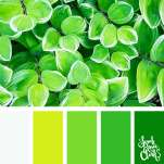 Color-palette-194-green-leaves