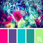 Color-palette-205-butterfly