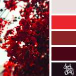 Color-palette-207-red-floral